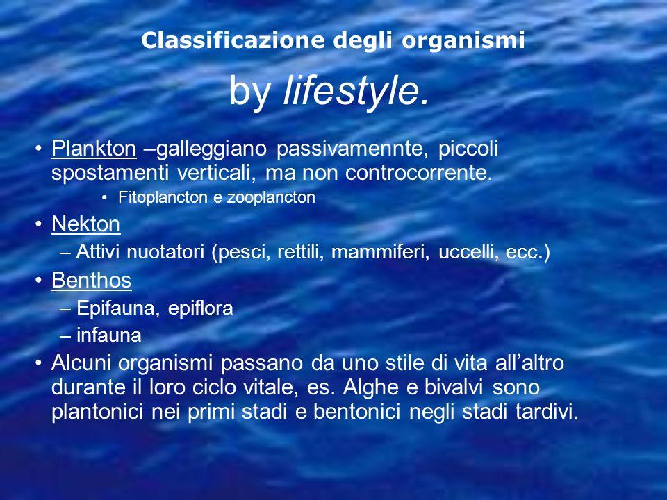 by lifestyle. Plankton –galleggiano passivamennte, piccoli spostamenti verticali, ma non controcorrente. Fitoplancton e zooplancton Nekton –Attivi nuo