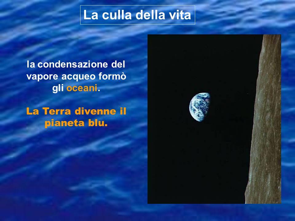 la condensazione del vapore acqueo formò gli oceani. La Terra divenne il pianeta blu. La culla della vita