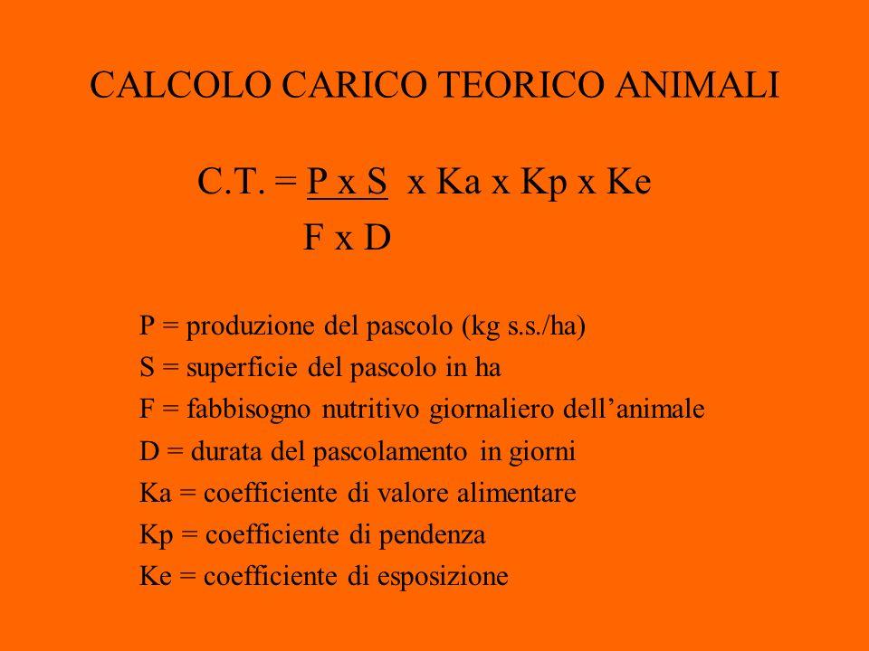 CALCOLO CARICO TEORICO ANIMALI C.T.