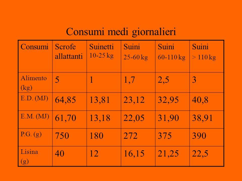 Consumi medi giornalieri ConsumiScrofe allattanti Suinetti 10-25 kg Suini 25-60 kg Suini 60-110 kg Suini > 110 kg Alimento (kg) 511,72,53 E.D.