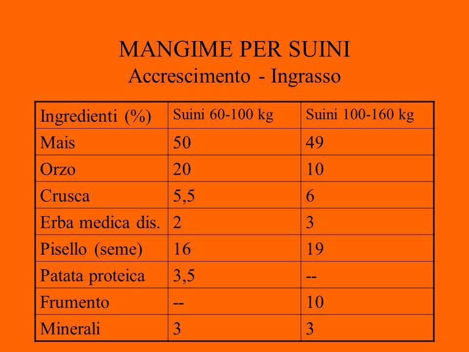MANGIME PER SUINI Accrescimento - Ingrasso Ingredienti (%) Suini 60-100 kgSuini 100-160 kg Mais5049 Orzo2010 Crusca5,56 Erba medica dis.23 Pisello (seme)1619 Patata proteica3,5-- Frumento--10 Minerali33
