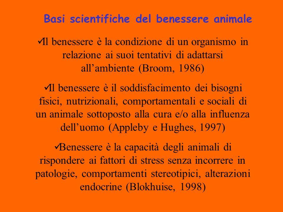 Il benessere è la condizione di un organismo in relazione ai suoi tentativi di adattarsi allambiente (Broom, 1986) Il benessere è il soddisfacimento dei bisogni fisici, nutrizionali, comportamentali e sociali di un animale sottoposto alla cura e/o alla influenza delluomo (Appleby e Hughes, 1997) Benessere è la capacità degli animali di rispondere ai fattori di stress senza incorrere in patologie, comportamenti stereotipici, alterazioni endocrine (Blokhuise, 1998) Basi scientifiche del benessere animale