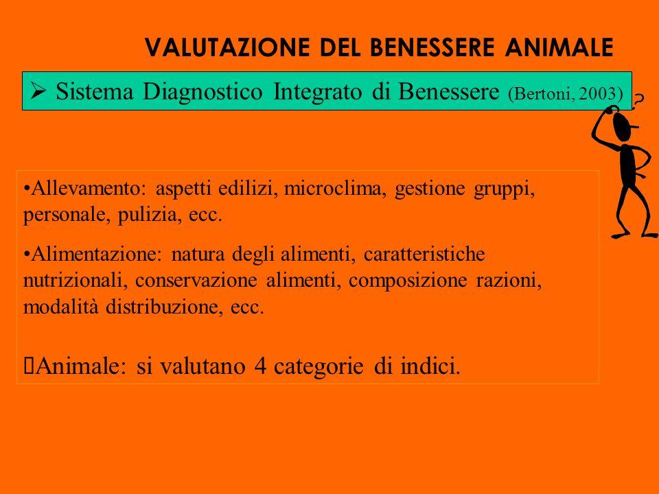 Sistema Diagnostico Integrato di Benessere (Bertoni, 2003) Allevamento: aspetti edilizi, microclima, gestione gruppi, personale, pulizia, ecc.