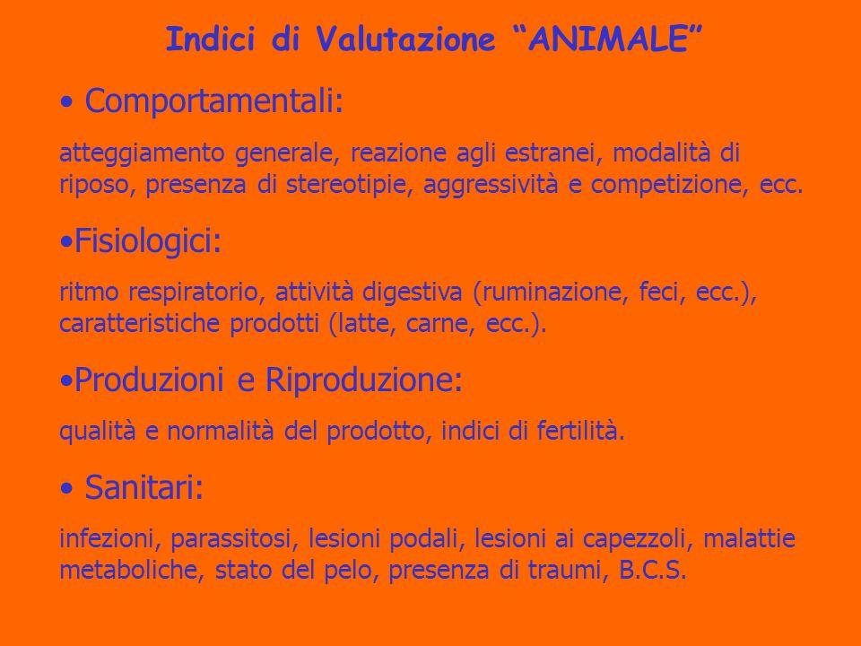 Indici di Valutazione ANIMALE Comportamentali: atteggiamento generale, reazione agli estranei, modalità di riposo, presenza di stereotipie, aggressività e competizione, ecc.