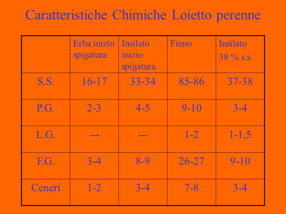 Caratteristiche Chimiche Loietto perenne Erba inizio spigatura Insilato inizio spigatura FienoInsilato 38 % s.s.
