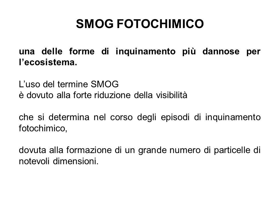 SMOG FOTOCHIMICO una delle forme di inquinamento più dannose per lecosistema. Luso del termine SMOG è dovuto alla forte riduzione della visibilità che