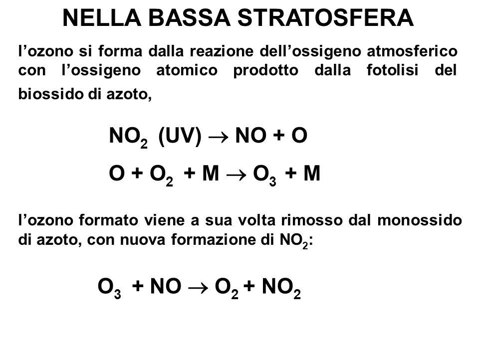 NELLA BASSA STRATOSFERA lozono si forma dalla reazione dellossigeno atmosferico con lossigeno atomico prodotto dalla fotolisi del biossido di azoto, O