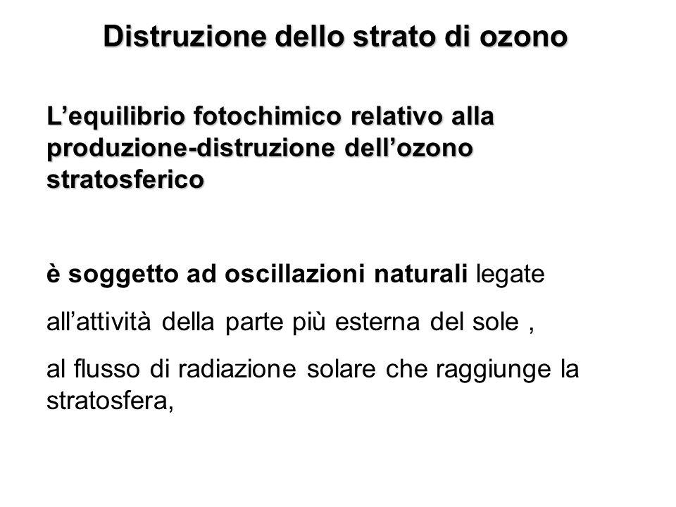 Distruzione dello strato di ozono Lequilibrio fotochimico relativo alla produzione-distruzione dellozono stratosferico è soggetto ad oscillazioni natu