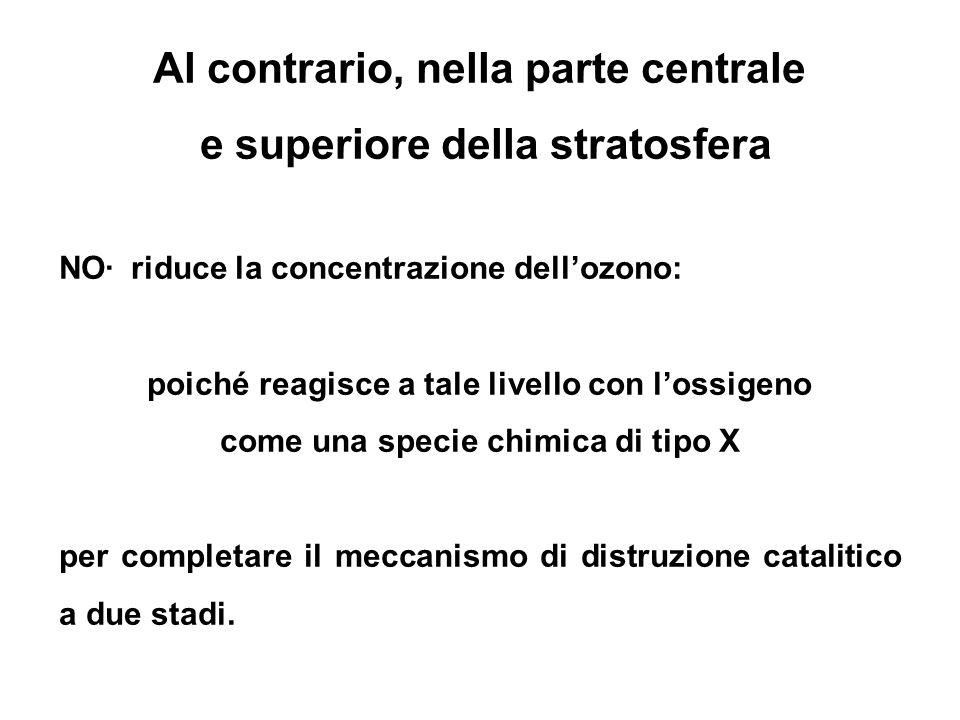 Al contrario, nella parte centrale e superiore della stratosfera NO· riduce la concentrazione dellozono: poiché reagisce a tale livello con lossigeno