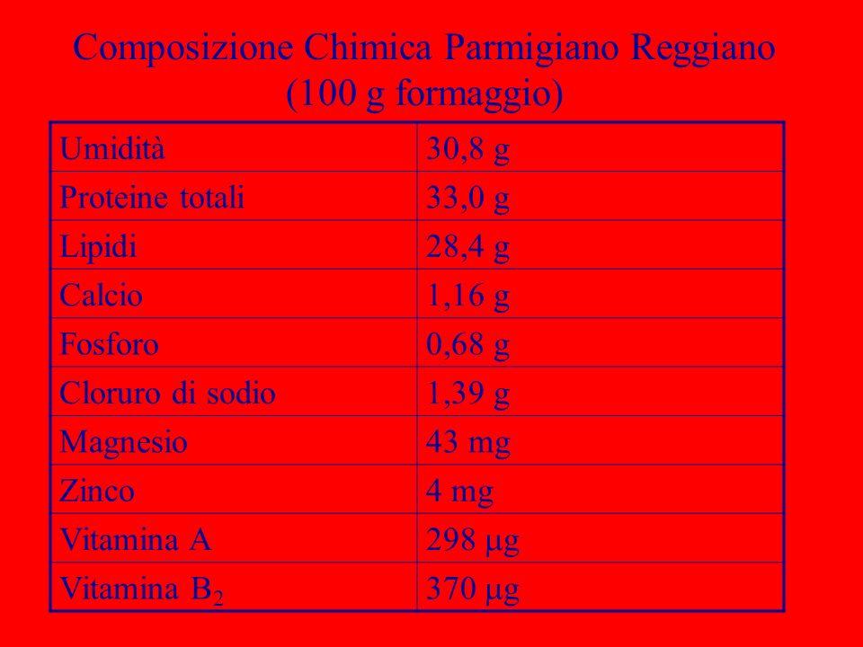 Composizione Chimica Parmigiano Reggiano (100 g formaggio) Umidità30,8 g Proteine totali33,0 g Lipidi28,4 g Calcio1,16 g Fosforo0,68 g Cloruro di sodi