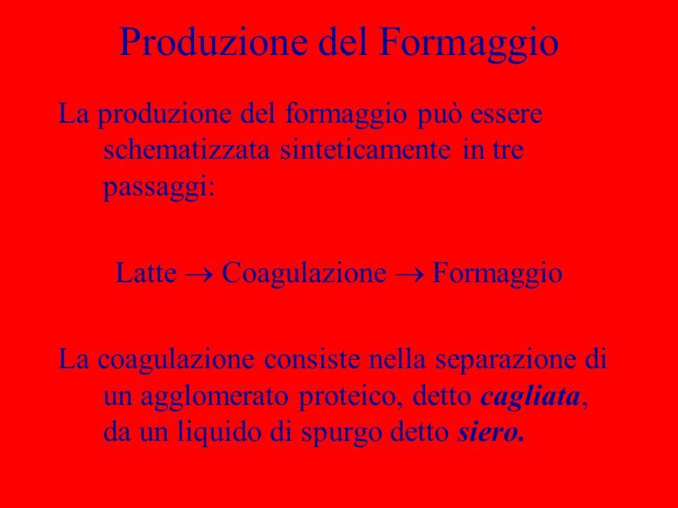 Produzione del Formaggio La produzione del formaggio può essere schematizzata sinteticamente in tre passaggi: Latte Coagulazione Formaggio La coagulaz