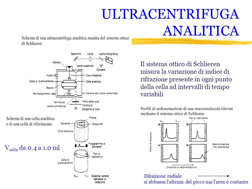 ULTRACENTRIFUGA ANALITICA Il sistema ottico di Schlieren misura la variazione di indice di rifrazione presente in ogni punto della cella ad intervalli