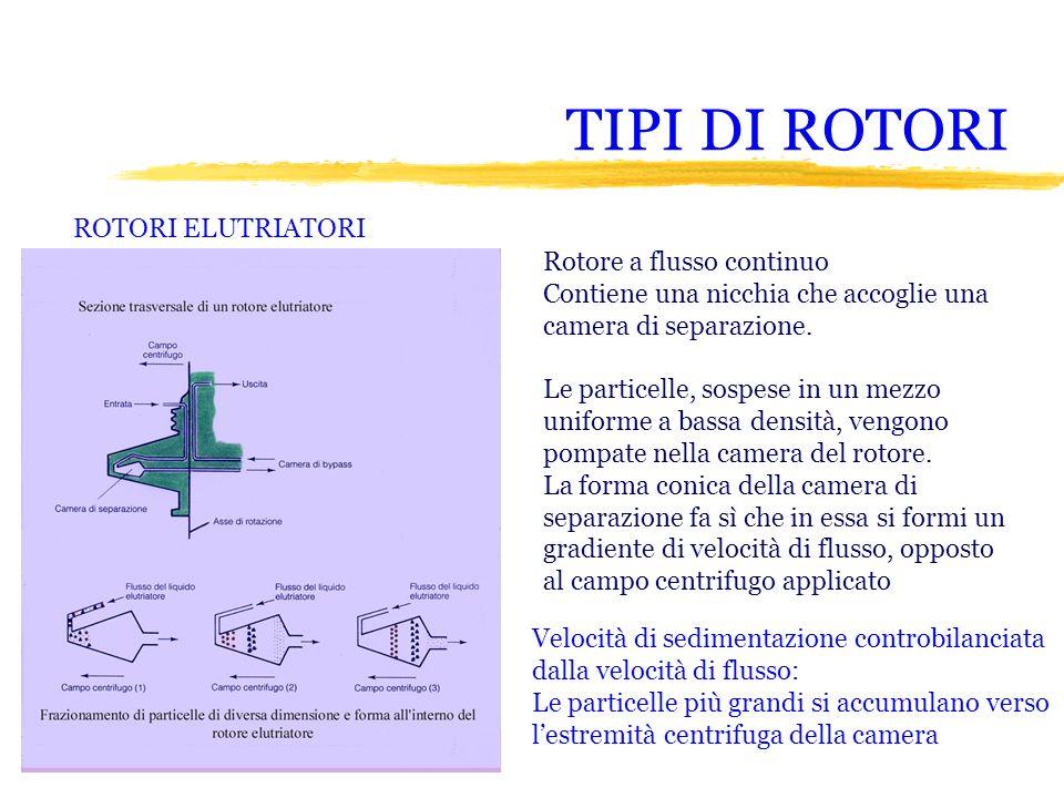 TIPI DI ROTORI ROTORI ELUTRIATORI Rotore a flusso continuo Contiene una nicchia che accoglie una camera di separazione. Le particelle, sospese in un m