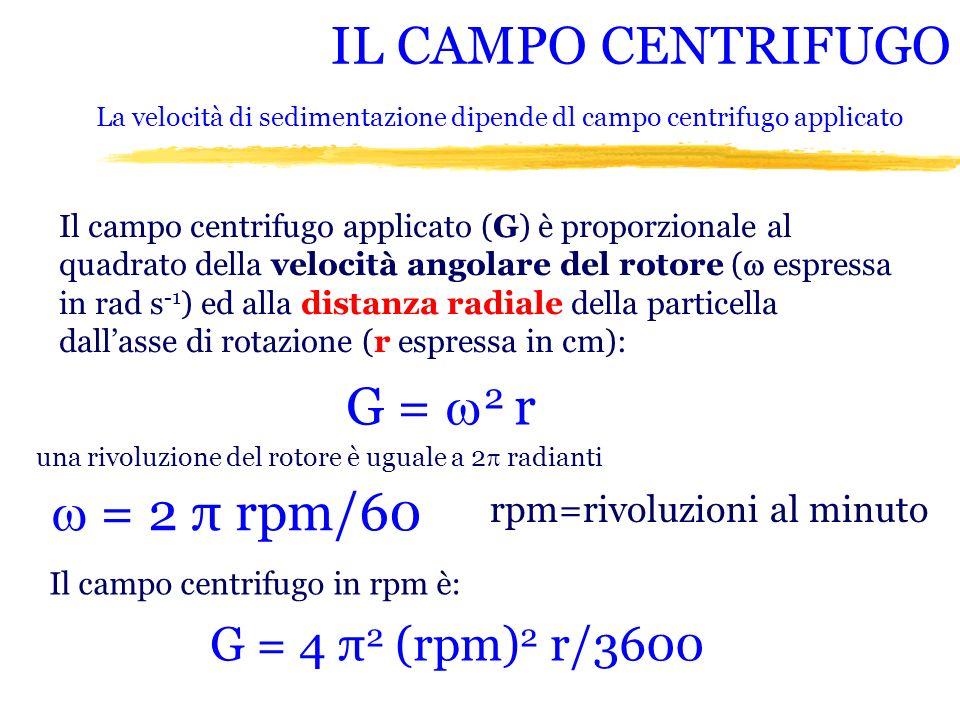 IL CAMPO CENTRIFUGO Il campo centrifugo applicato (G) è proporzionale al quadrato della velocità angolare del rotore ( espressa in rad s -1 ) ed alla