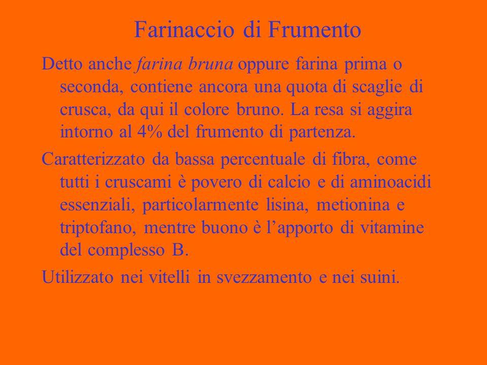Farinaccio di Frumento Detto anche farina bruna oppure farina prima o seconda, contiene ancora una quota di scaglie di crusca, da qui il colore bruno.