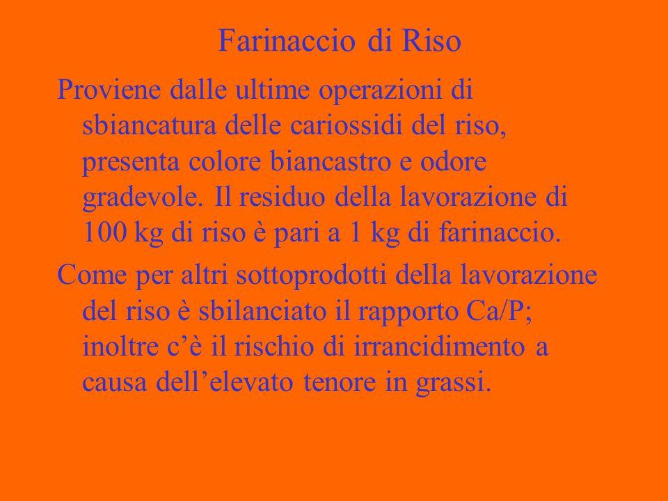 Farinaccio di Riso Proviene dalle ultime operazioni di sbiancatura delle cariossidi del riso, presenta colore biancastro e odore gradevole. Il residuo