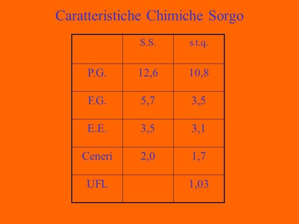 Caratteristiche Chimiche Sorgo S.S.s.t.q. P.G.12,610,8 F.G.5,73,5 E.E.3,53,1 Ceneri2,01,7 UFL1,03
