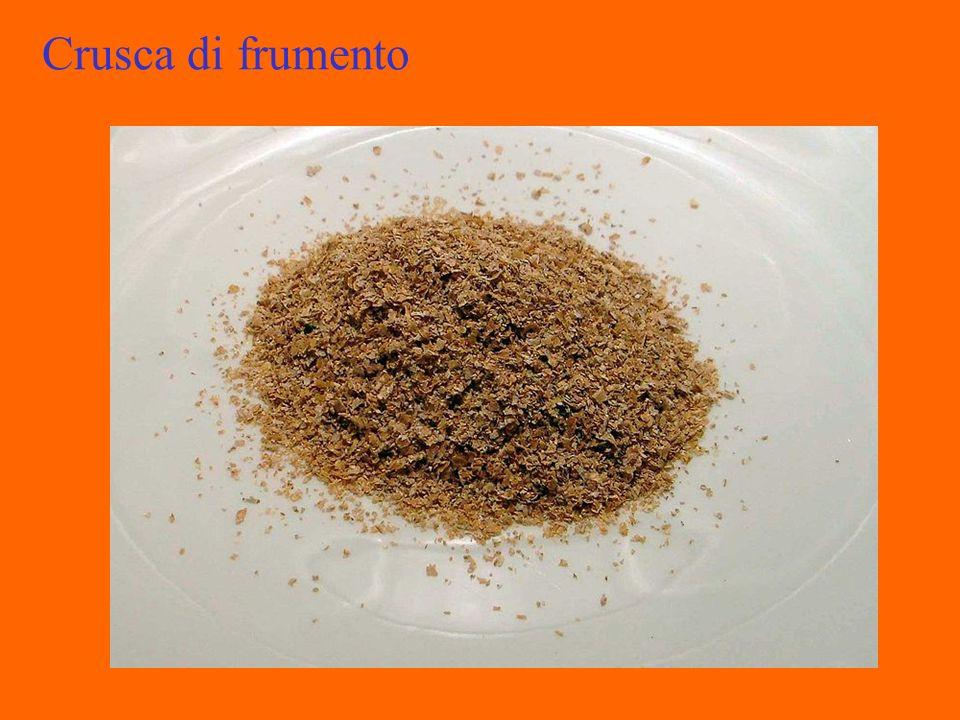 Pula di Riso Sottoprodotto derivante dai primi 3 passaggi della macchina sbiancatrice del riso, quando con la sbramatura la cariosside del riso viene spogliata delle glume che costituiscono la cosiddetta lolla o pulone.