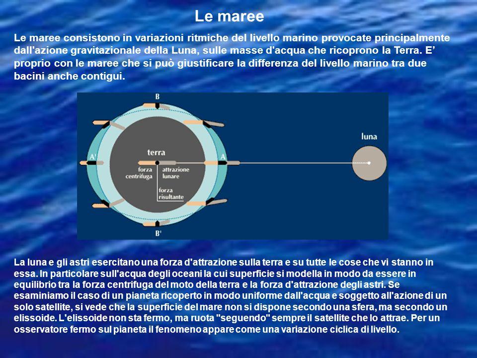 La luna e gli astri esercitano una forza d'attrazione sulla terra e su tutte le cose che vi stanno in essa. In particolare sull'acqua degli oceani la