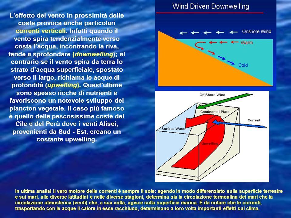 Leffetto del vento in prossimità delle coste provoca anche particolari correnti verticali. Infatti quando il vento spira tendenzialmente verso costa l