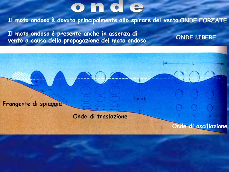 Onde di oscillazione Onde di traslazione Frangente di spiaggia Il moto ondoso è dovuto principalmente allo spirare del vento ONDE FORZATE Il moto ondoso è presente anche in assenza di vento a causa della propagazione del moto ondoso ONDE LIBERE