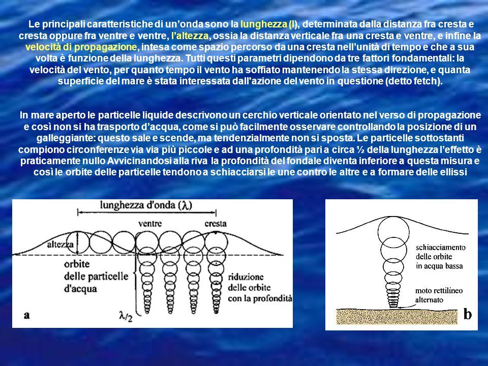 Le principali caratteristiche di unonda sono la lunghezza (l), determinata dalla distanza fra cresta e cresta oppure fra ventre e ventre, laltezza, os