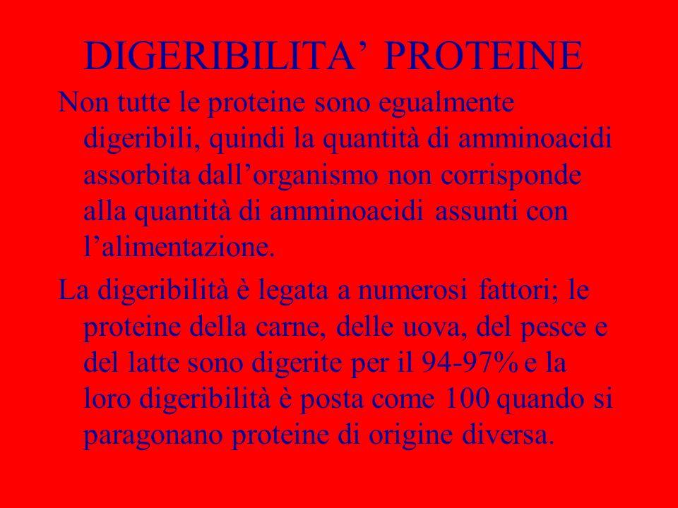DIGERIBILITA PROTEINE Non tutte le proteine sono egualmente digeribili, quindi la quantità di amminoacidi assorbita dallorganismo non corrisponde alla