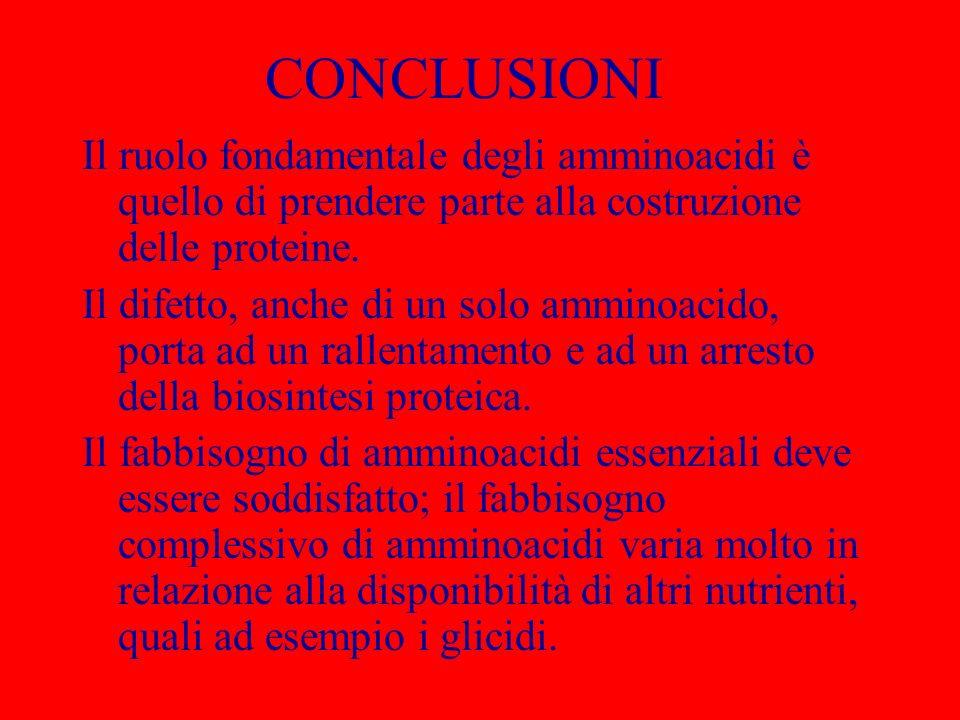 CONCLUSIONI Il ruolo fondamentale degli amminoacidi è quello di prendere parte alla costruzione delle proteine. Il difetto, anche di un solo amminoaci
