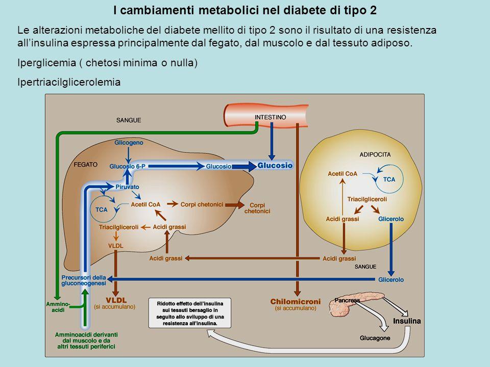 I cambiamenti metabolici nel diabete di tipo 2 Le alterazioni metaboliche del diabete mellito di tipo 2 sono il risultato di una resistenza allinsulin
