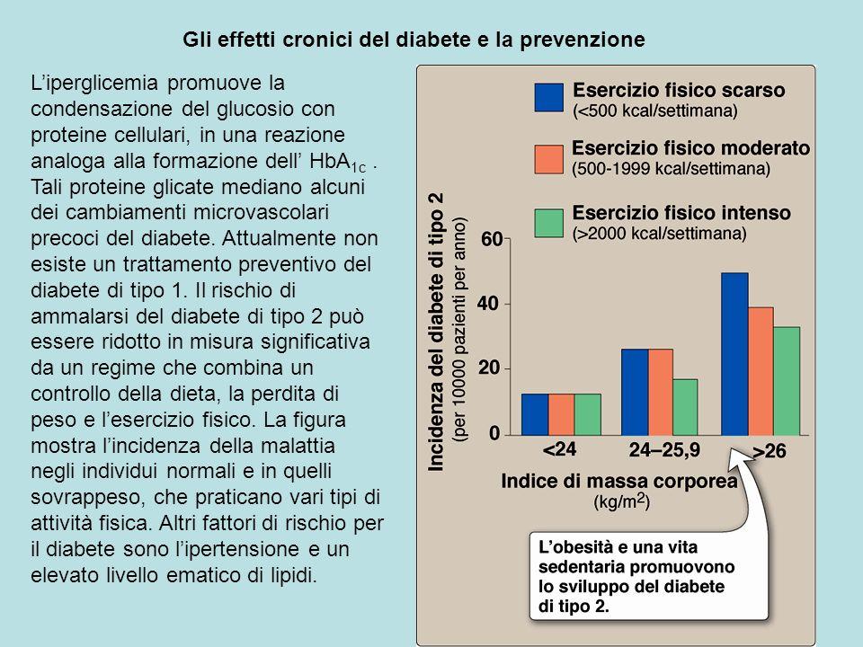 Gli effetti cronici del diabete e la prevenzione Liperglicemia promuove la condensazione del glucosio con proteine cellulari, in una reazione analoga