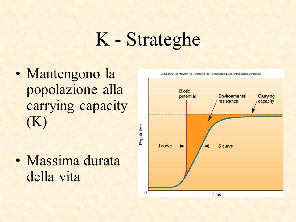 K - Strateghe Mantengono la popolazione alla carrying capacity (K) Massima durata della vita