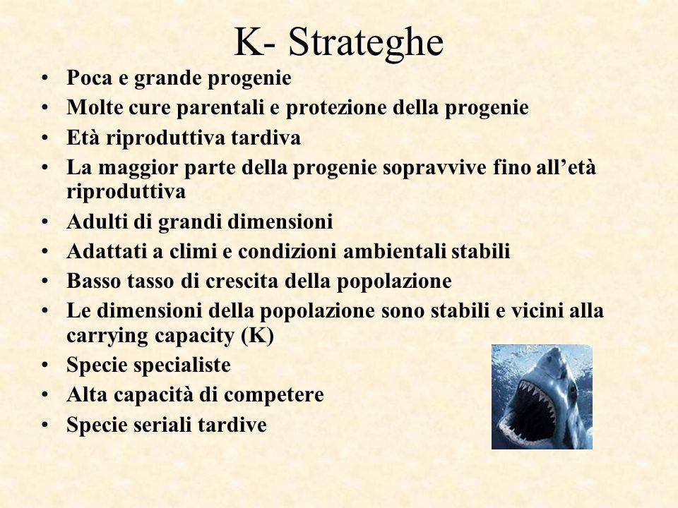 K- Strateghe Poca e grande progenie Molte cure parentali e protezione della progenie Età riproduttiva tardiva La maggior parte della progenie sopravvi