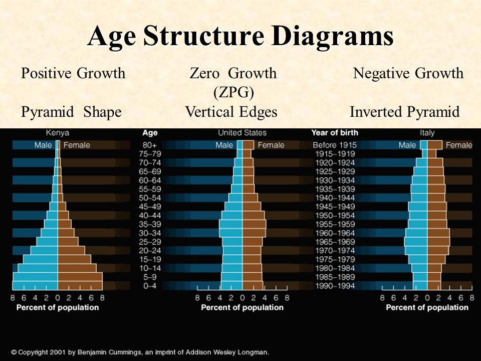 Age Structure Diagrams Positive Growth Zero Growth Negative Growth (ZPG) Pyramid Shape Vertical Edges Inverted Pyramid