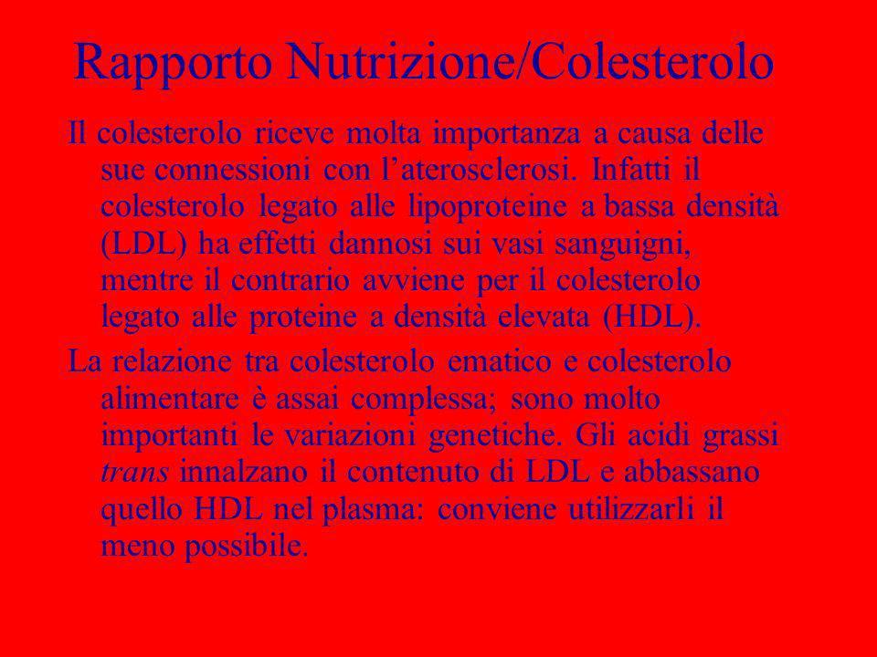 Rapporto Nutrizione/Colesterolo Il colesterolo riceve molta importanza a causa delle sue connessioni con laterosclerosi. Infatti il colesterolo legato