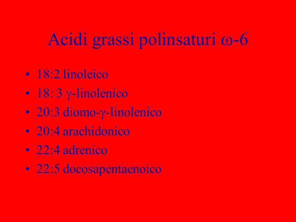 Acidi grassi polinsaturi -6 18:2 linoleico 18: 3 -linolenico 20:3 diomo- -linolenico 20:4 arachidonico 22:4 adrenico 22:5 docosapentaenoico