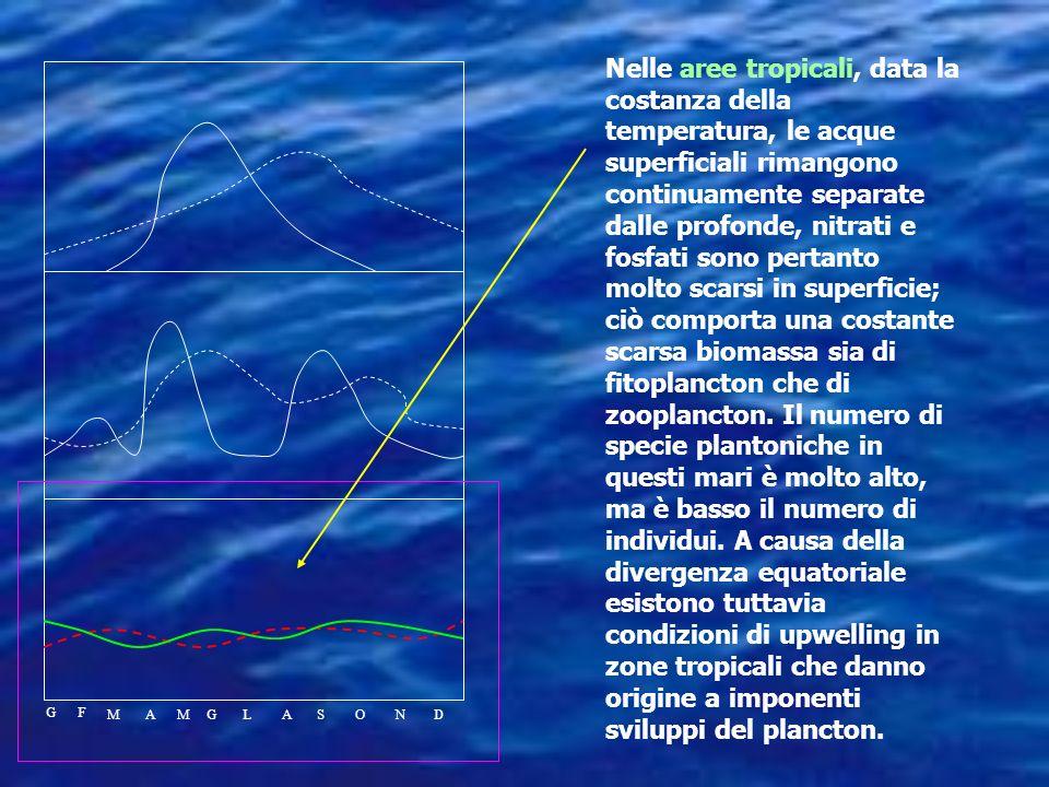 La produttività varia enormemente in parti differenti delloceano in risposta alla disponibiità di nutrienti e luce. Nei tropici e regioni subtropicali