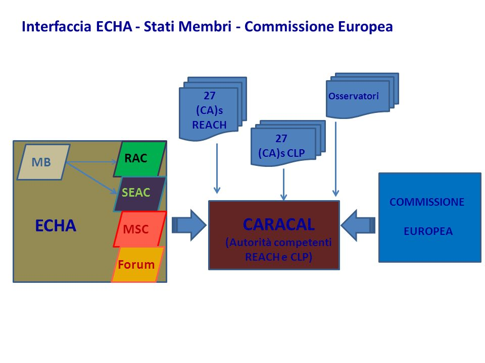 27 (CA)s REACH MB RAC SEAC MSC Forum ECHA Osservatori 27 (CA)s CLP CARACAL (Autorità competenti REACH e CLP) COMMISSIONE EUROPEA Interfaccia ECHA - St