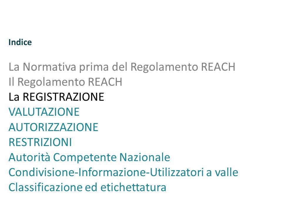 Indice La Normativa prima del Regolamento REACH Il Regolamento REACH La REGISTRAZIONE VALUTAZIONE AUTORIZZAZIONE RESTRIZIONI Autorità Competente Nazio