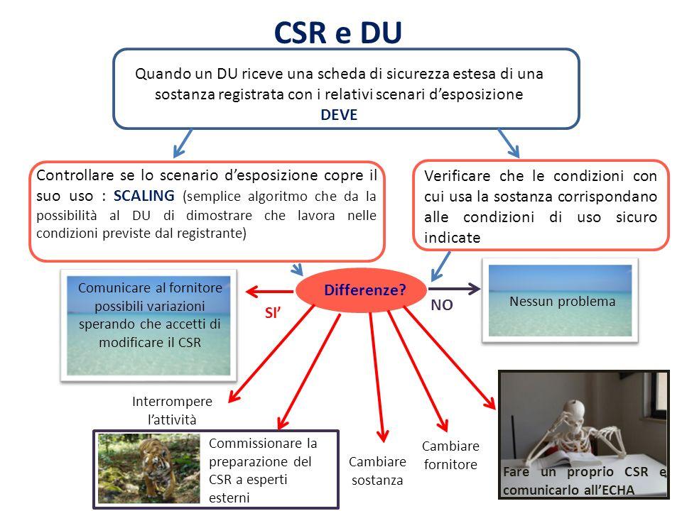 CSR e DU Quando un DU riceve una scheda di sicurezza estesa di una sostanza registrata con i relativi scenari desposizione DEVE Controllare se lo scen