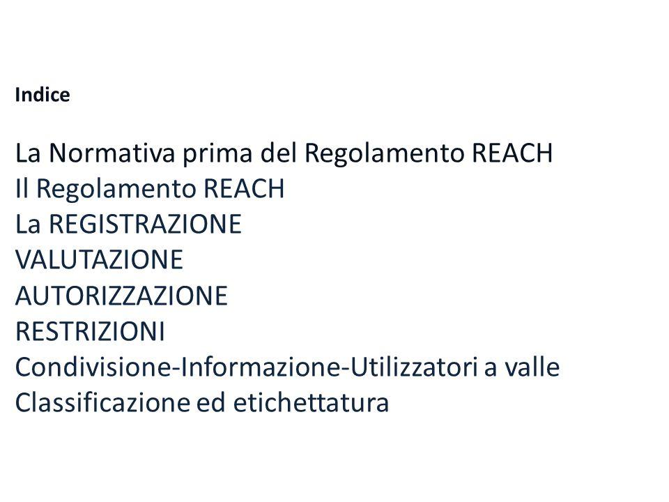 Indice La Normativa prima del Regolamento REACH Il Regolamento REACH La REGISTRAZIONE VALUTAZIONE AUTORIZZAZIONE RESTRIZIONI Condivisione-Informazione
