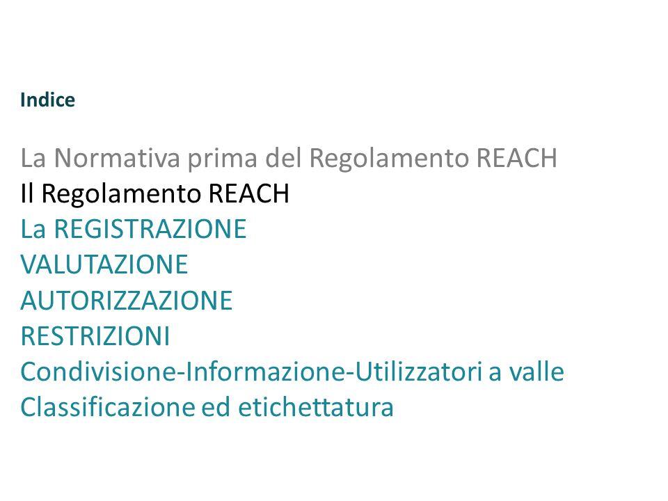 Regolamento REACH N.1907/2006 G.U.E.