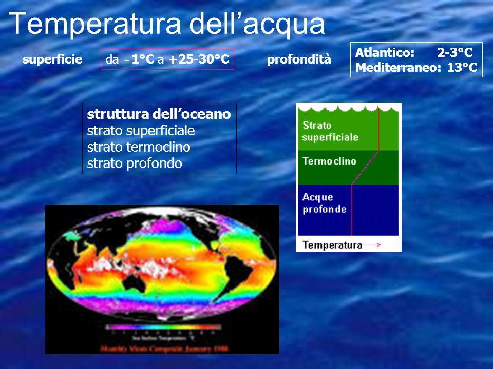 Temperatura Range: -2 a 40 C. Più del 90% degli oceani <5 C. Può controllare la distibuzione, tasso di attività, e riproduzione di un organismo La tem