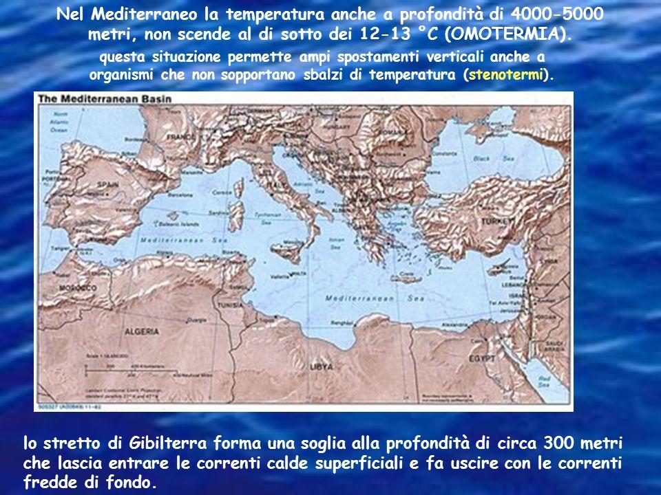La temperatura in superficie varia nell'ambito della stessa giornata, dipende dallo alternarsi delle stagioni, dalla vicinanza dei blocchi continental