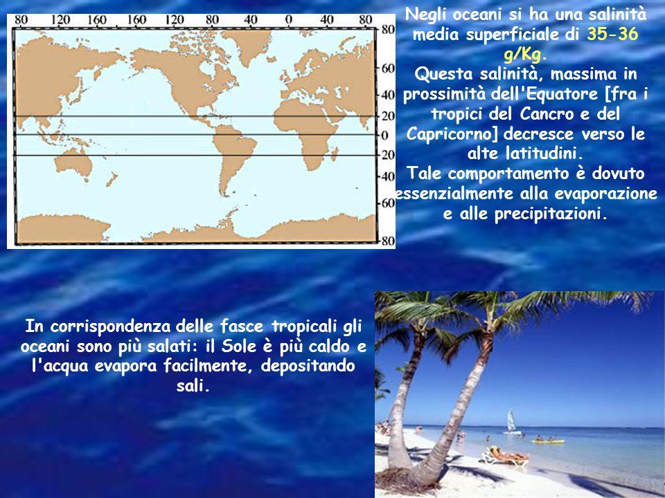 I mari circondati da terre fredde e piovose hanno salinità bassa. Nel mar Baltico, ad esempio, in alcune zone, si hanno concentrazioni inferiori al 3