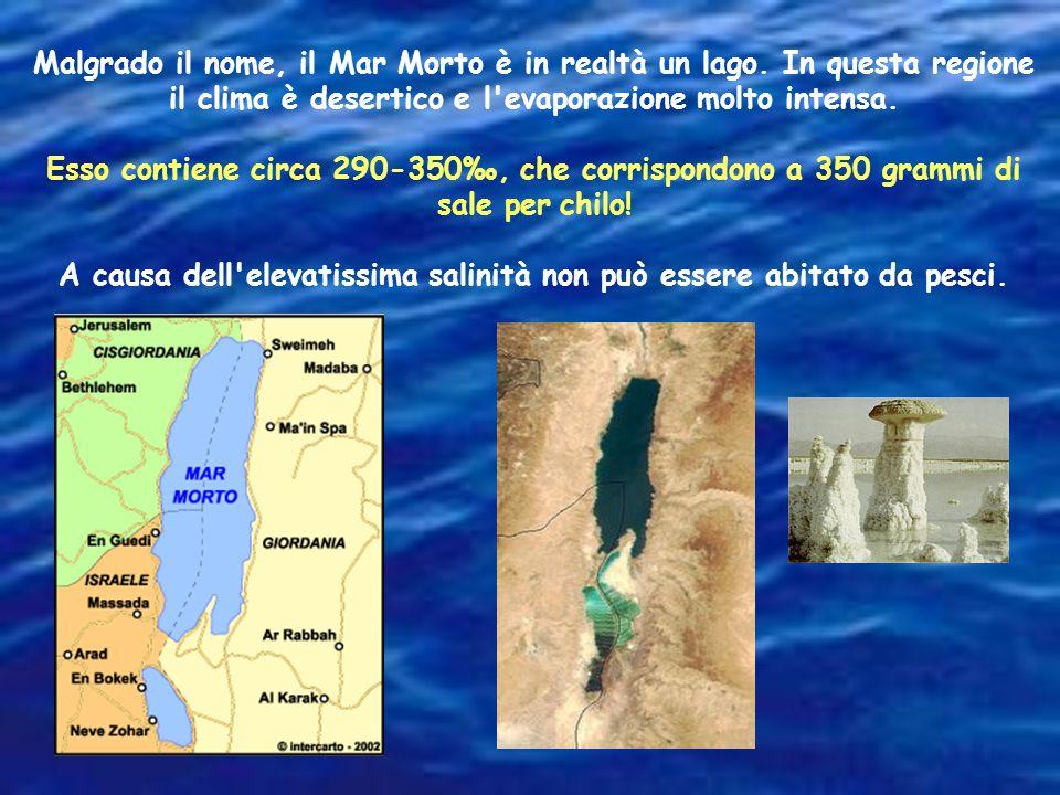 Il Mar Rosso e il Mediterraneo sono piuttosto isolati e circondati da terre a clima secco e caldo. Infatti hanno una concentrazione di sale più alta d