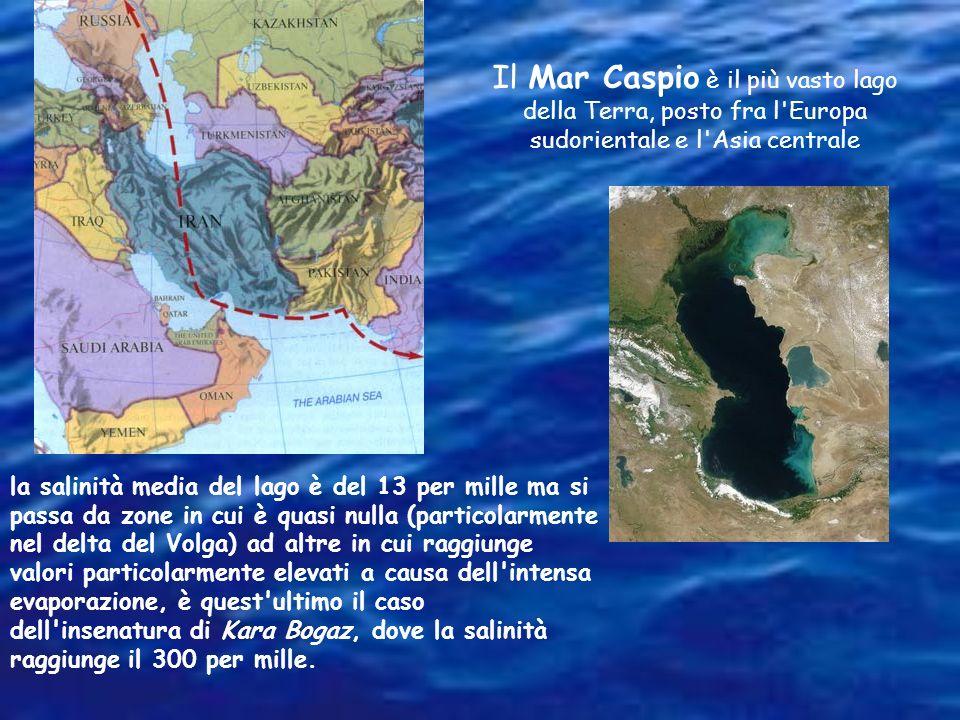 Malgrado il nome, il Mar Morto è in realtà un lago. In questa regione il clima è desertico e l'evaporazione molto intensa. Esso contiene circa 290-350