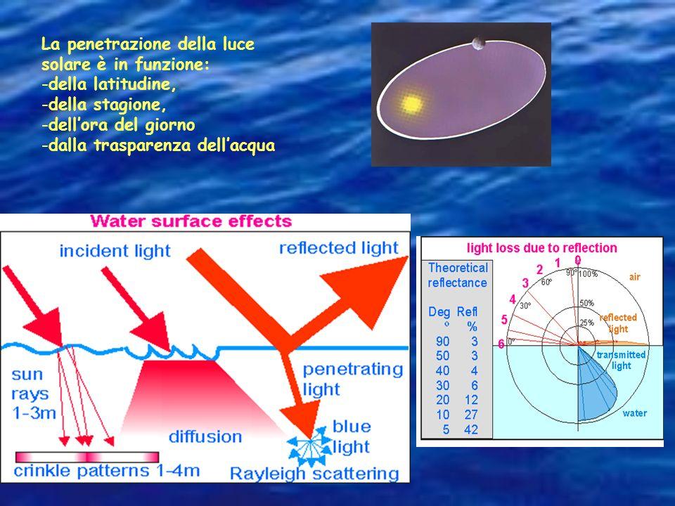 L'1% penetra al massimo fino a 200 metri, e la completa oscurità domina il fondo degli oceani. 400nm 700nm