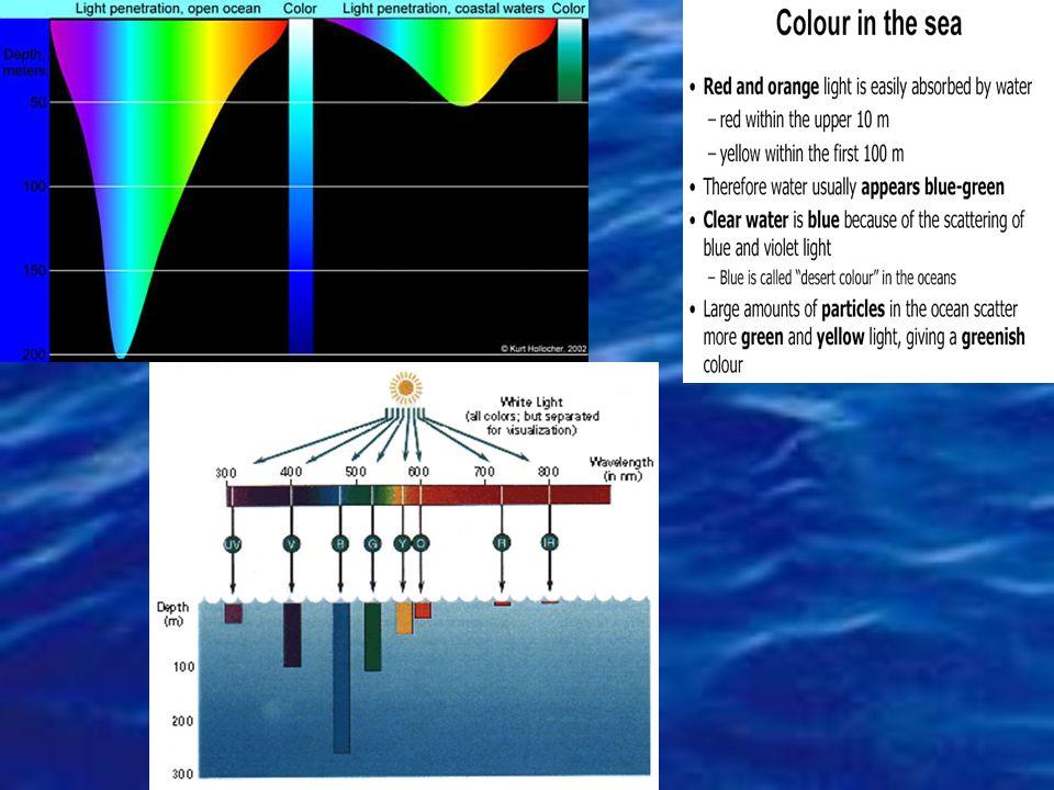 La penetrazione della luce solare è in funzione: -della latitudine, -della stagione, -dellora del giorno -dalla trasparenza dellacqua