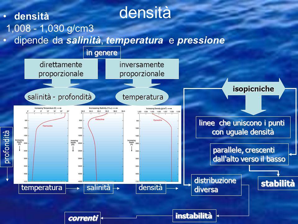 Costituiscono gran parte dei sedimenti silicei del fondo marino fino a 4000-6000 metri.