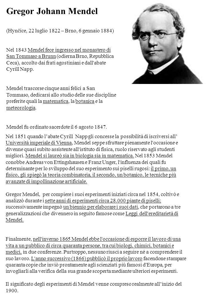 Gregor Johann Mendel (Hynčice, 22 luglio 1822 – Brno, 6 gennaio 1884) Nel 1843 Mendel fece ingresso nel monastero di San Tommaso a Brunn (odierna Brno, Repubblica Ceca), accolto dai frati agostiniani e dall abate Cyrill Napp.